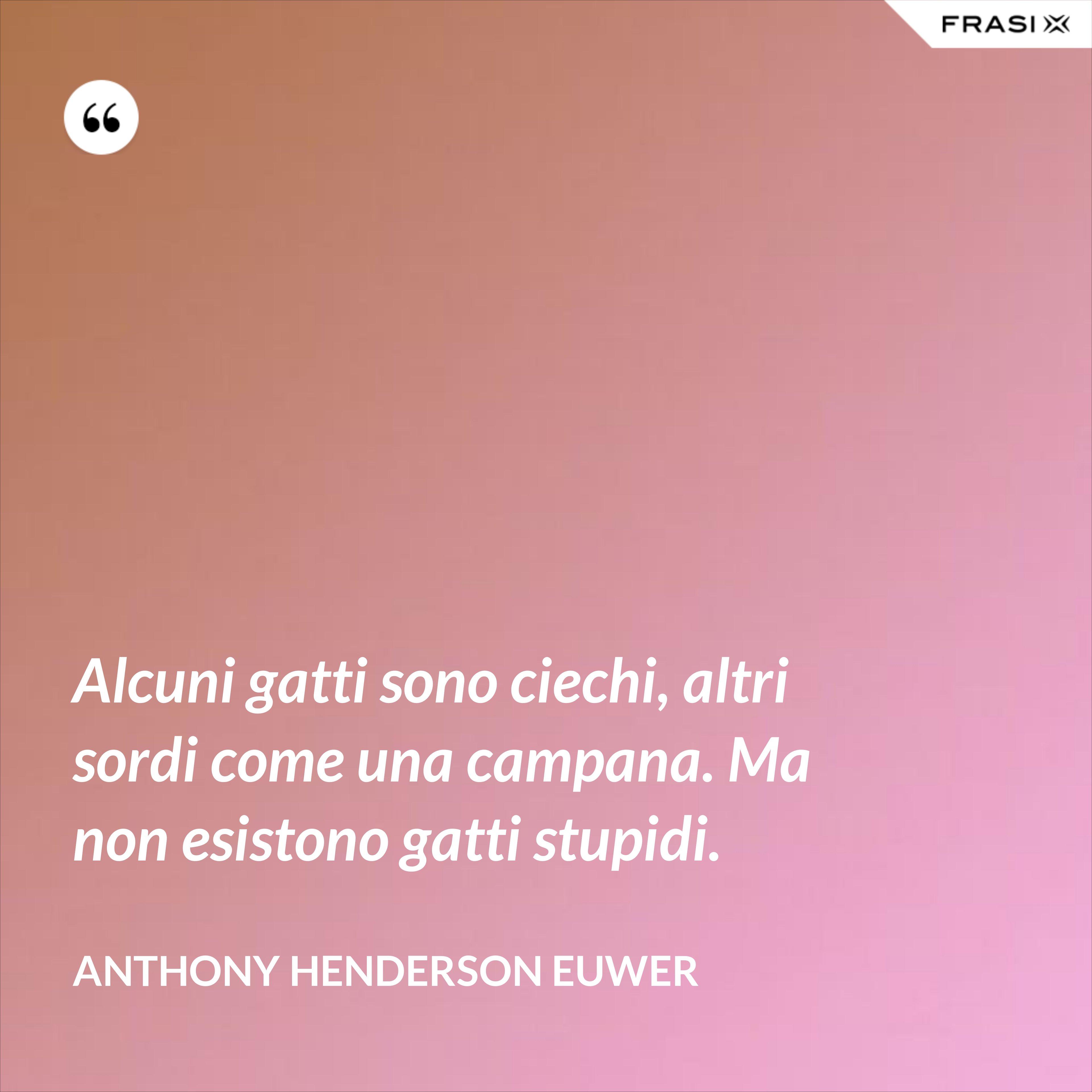 Alcuni gatti sono ciechi, altri sordi come una campana. Ma non esistono gatti stupidi. - Anthony Henderson Euwer
