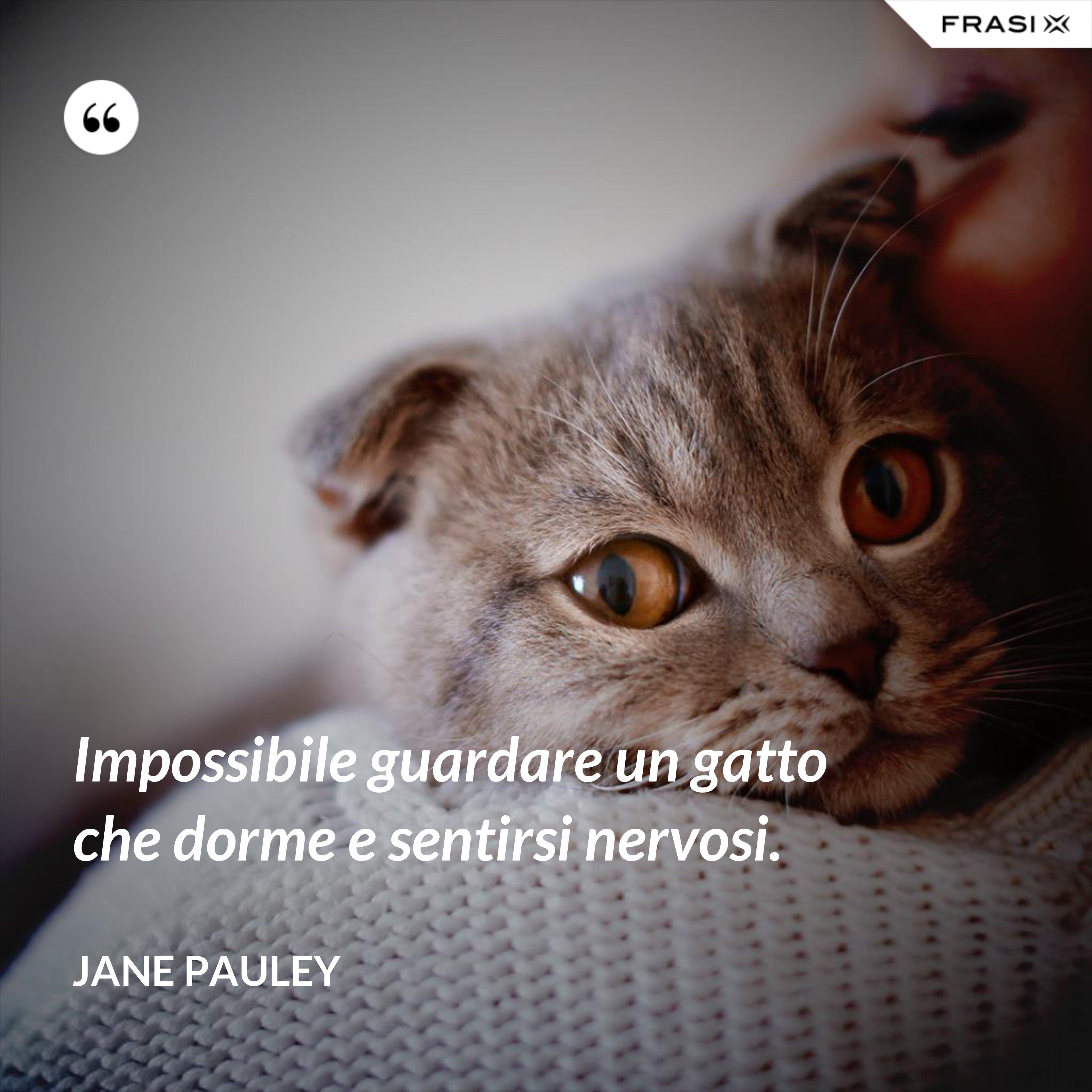 Impossibile guardare un gatto che dorme e sentirsi nervosi. - Jane Pauley
