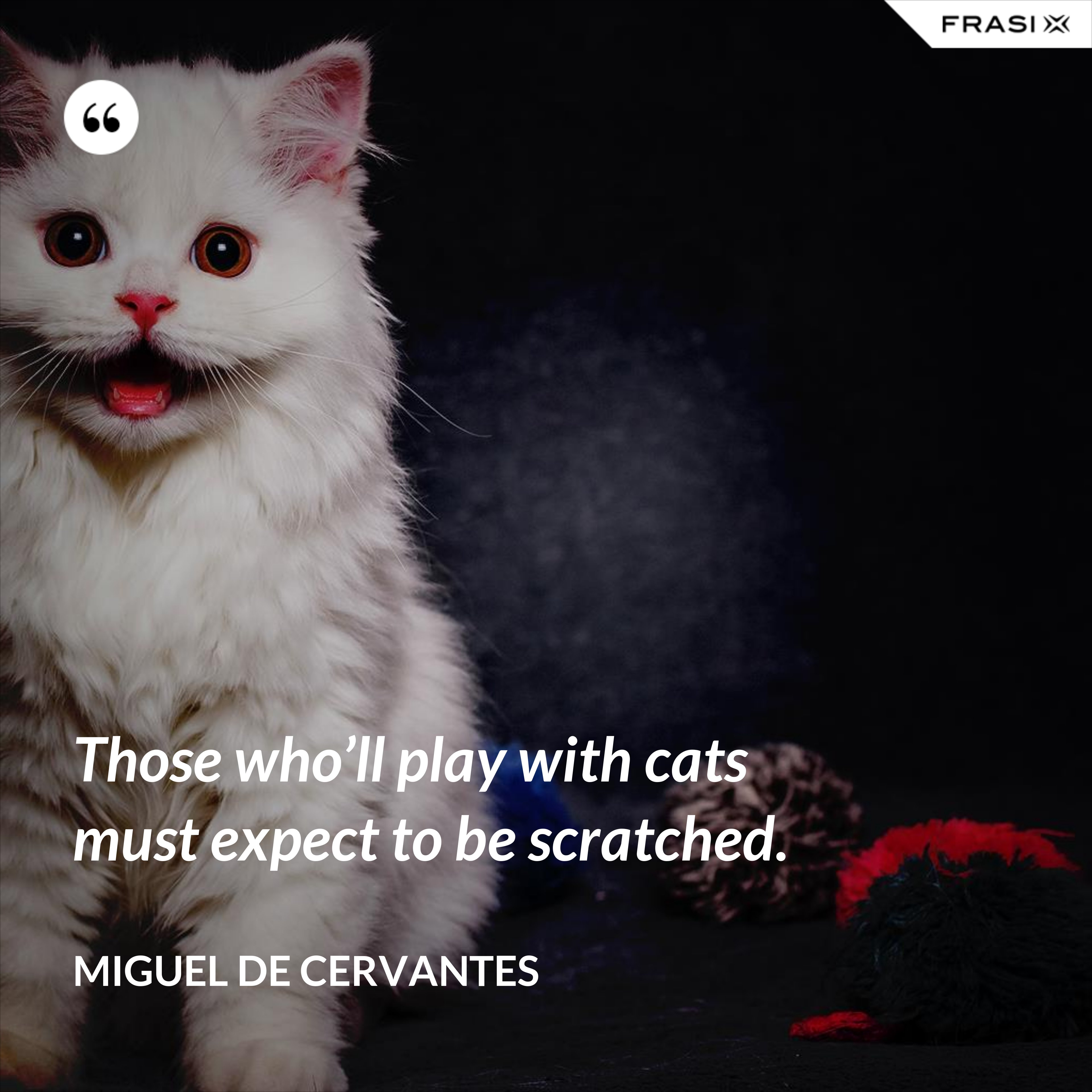 Those who'll play with cats must expect to be scratched. - Miguel de Cervantes