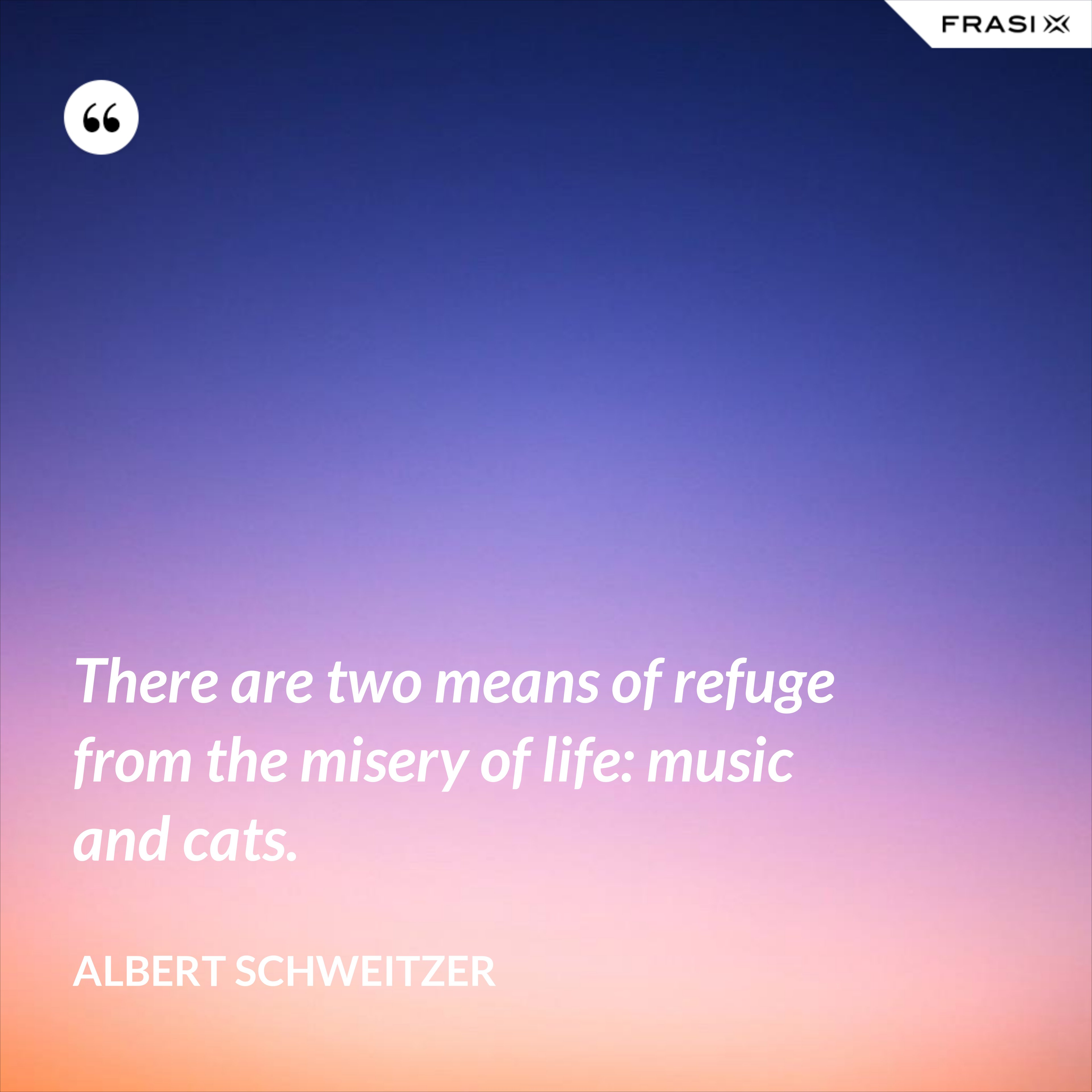 There are two means of refuge from the misery of life: music and cats. - Albert Schweitzer