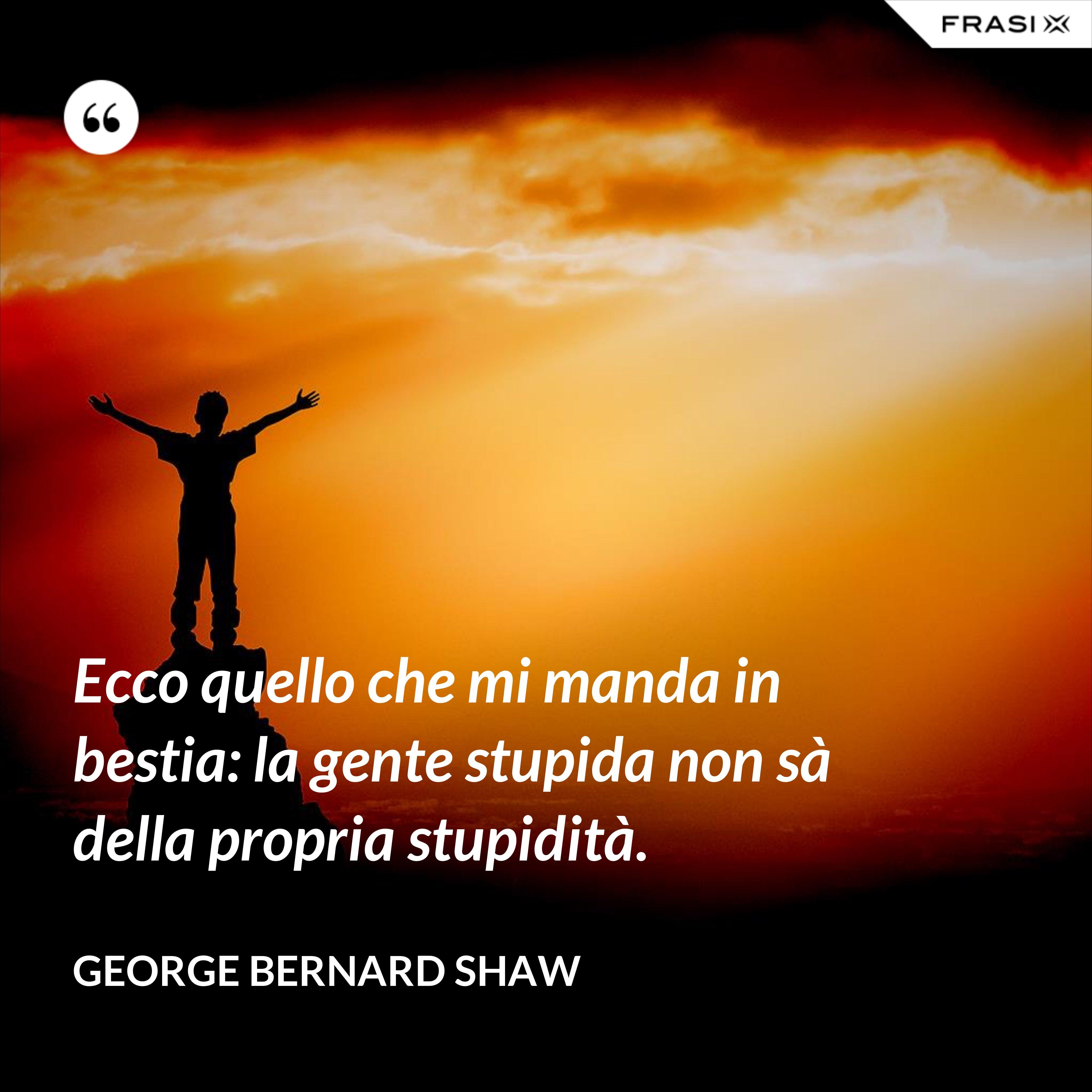 Ecco quello che mi manda in bestia: la gente stupida non sà della propria stupidità. - George Bernard Shaw