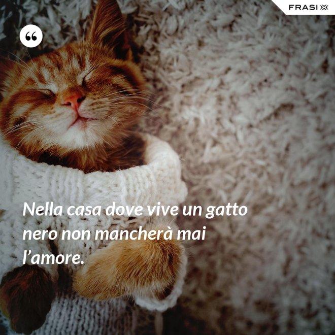 Nella casa dove vive un gatto nero non mancherà mai l'amore. - Anonimo