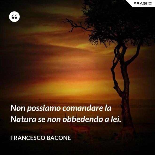 Non possiamo comandare la Natura se non obbedendo a lei. - Francesco Bacone