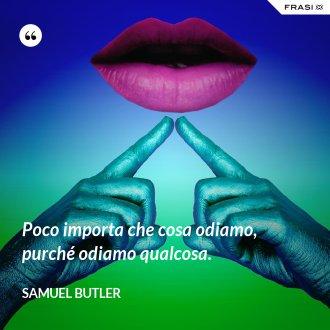 Poco importa che cosa odiamo, purché odiamo qualcosa. - Samuel Butler