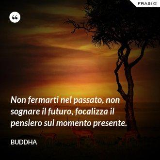 Non fermarti nel passato, non sognare il futuro, focalizza il pensiero sul momento presente. - Buddha