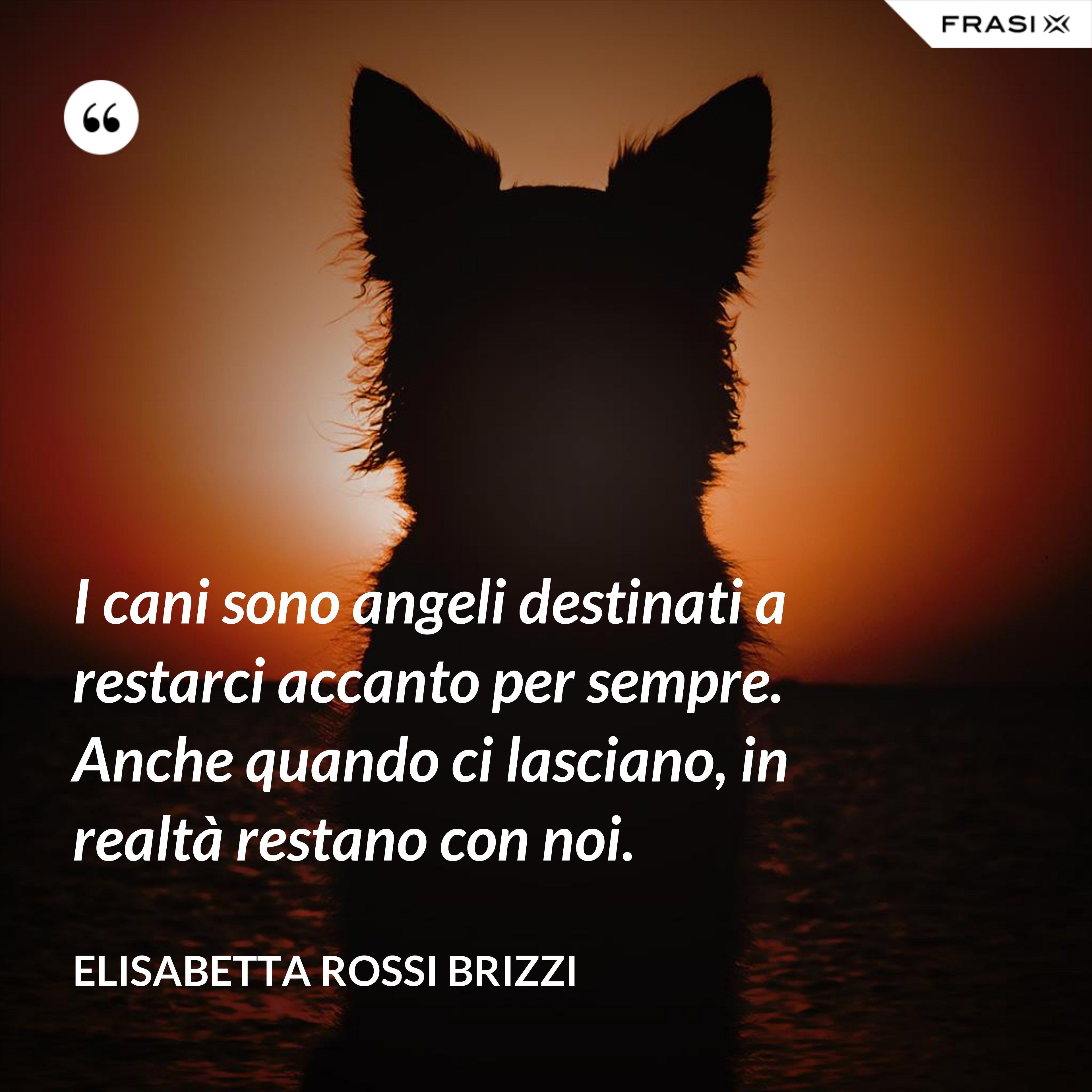 I cani sono angeli destinati a restarci accanto per sempre. Anche quando ci lasciano, in realtà restano con noi. - Elisabetta Rossi Brizzi